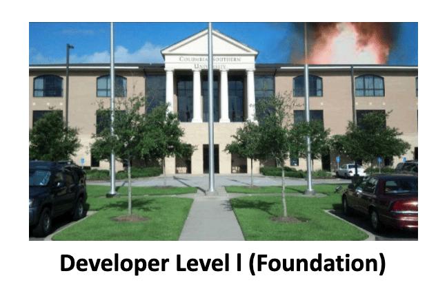 Developer Level I Foundation SimsUshare Training Course