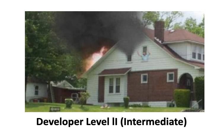 Developer Level II Intermediate SimsUshare Training Course